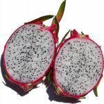 Pitahaya of dragonfruit